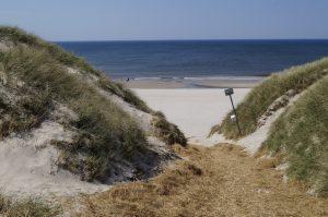 Dayz Seawest