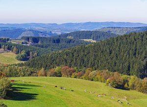 Ferienpark Warsberg