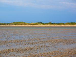 Friesischen Wattenland Julianadorp aan Zee