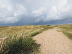 Spazieren durch die Dünen von Texel